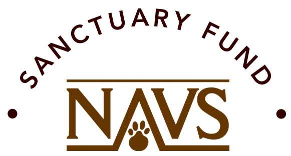 Logo Sanctuary Fund