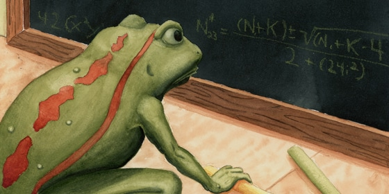 Blackboard Frog Cropped