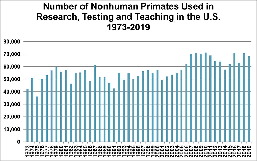 Chart - Nonhuman Primates Used in Research