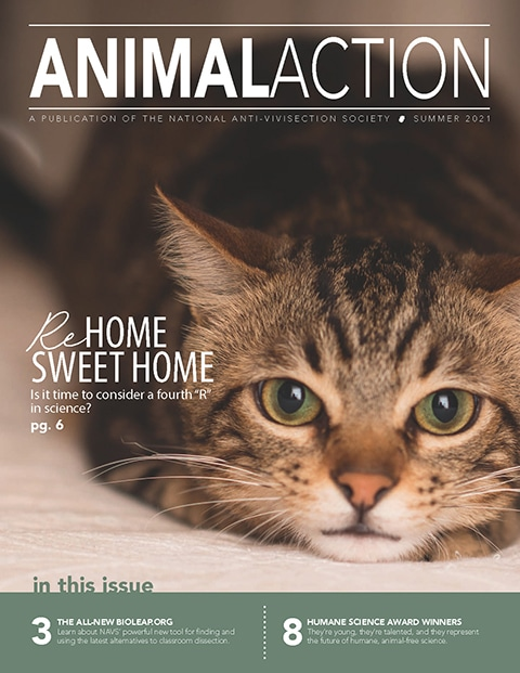 Animal Action Report - Summer 2021