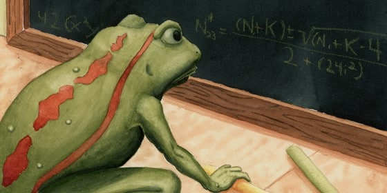 Classroom Frog